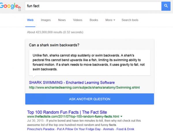 Google запустил динамический блок с интересными фактами в англоязычной выдаче