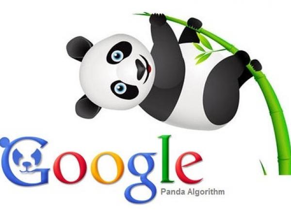 Google «Панда» 4.2: вопросы и ответы