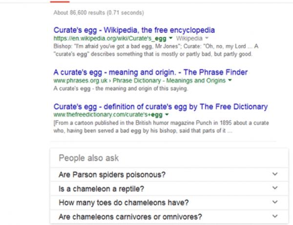 Google запустил новый блок «Пользователи также ищут» в поисковой выдаче?