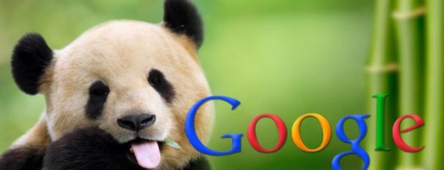 Google подтвердил запуск «Панды» 4.2